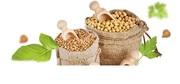 Оптовая продажа продуктов питания от холдинга